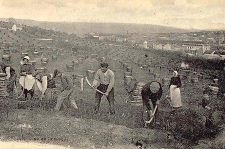 La condizione dei contadini italiani nel primo Ottocento